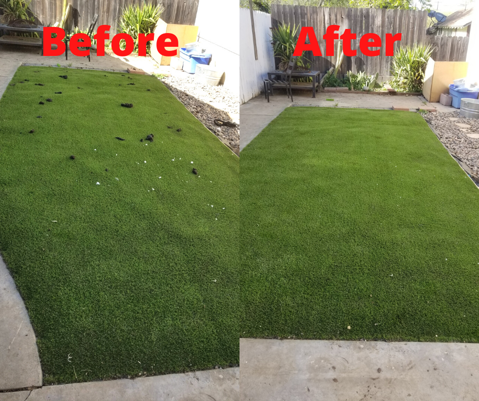before and after dog waste removal