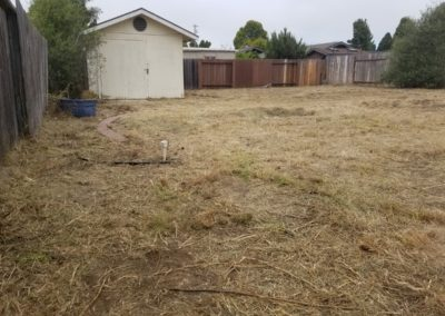 Overgrown Yard Cleanup Service in Templeton, Ca