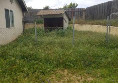 Overgrown Yard Cleanup Service in San Luis Obispo, Ca