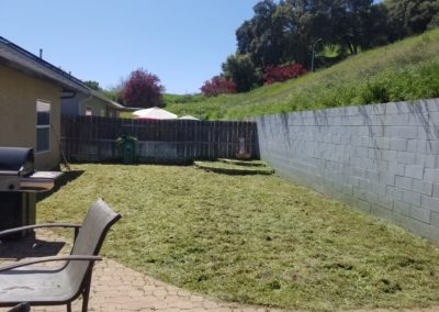 Overgrown Yard Cleanup Service in Paso Robles, Ca