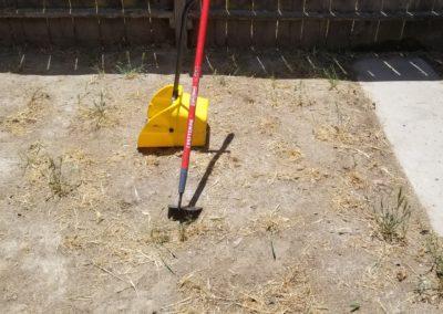 Dog Waste Removal in Nipomo, Ca