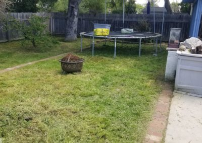 Overgrown Yard Cleanup Service in Orcutt, Ca